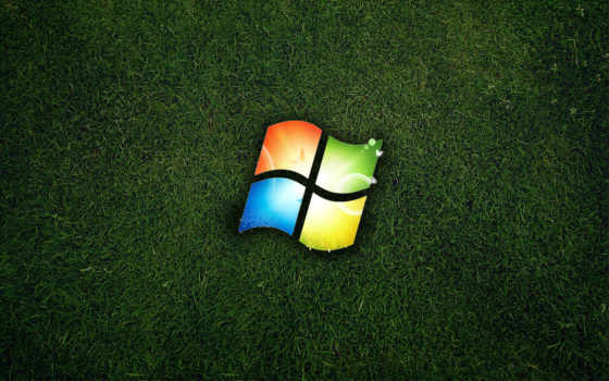 windows logo on the grass