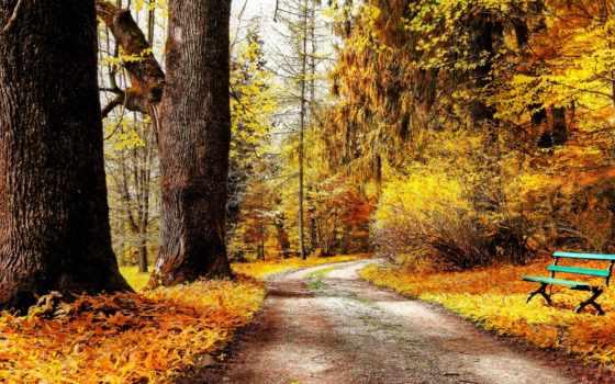 осень, флот, дорога