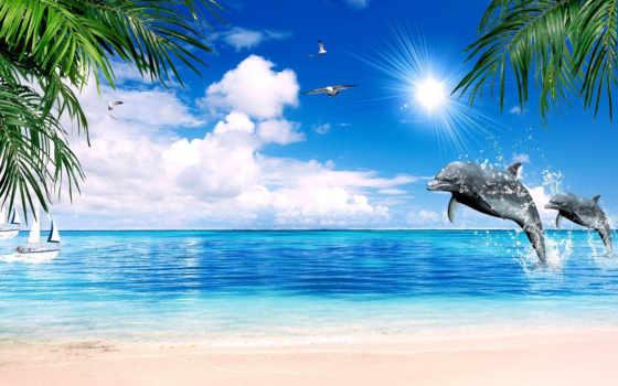 море, чайки, девушка, дельфины, пляж, блонди, oceans, океаны, моря, разное,