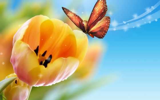 тюльпаны, blue, желтые, бабочка,