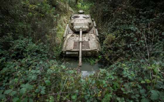 ,, природная среда, джунгли, лес, дерево, тропический лес, боевая машина, танк,