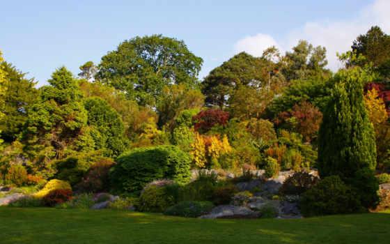 сады, ireland, природа