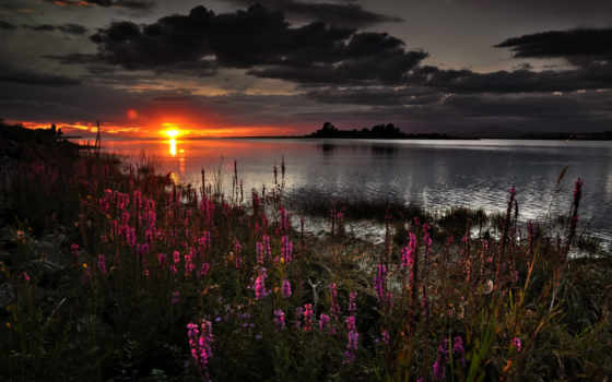 dark, природа, весна, закат, wallpapersafari, desktop,