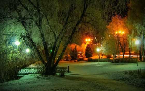 nuit, hiver, sur, parc, neige, ecran, fonds, arbres, lumière, fond, природа,