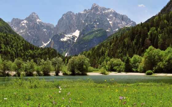 природа, гор, подножья, красивая, цветы, югославия, trees, разное, штушка,