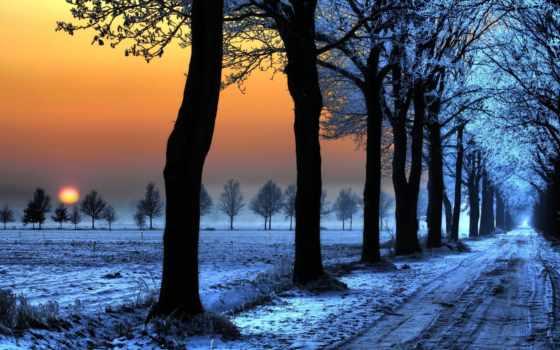 аллея, зимняя, снег,