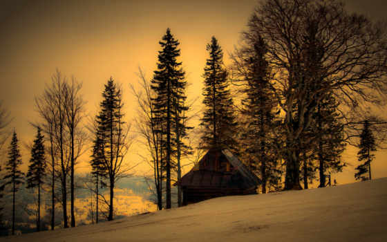 winter, сумерки, природа