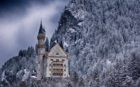 castle, германия, нойшванштайн, лес, winter, снег, trees, плакат,