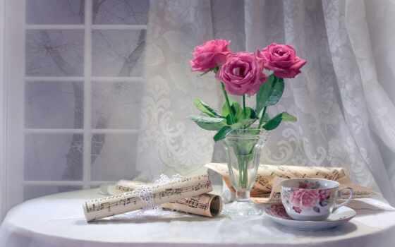 натюрморт, cvety, роза, нота, cup, окно