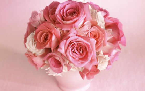 розы, цветы Фон № 2175 разрешение 1920x1080