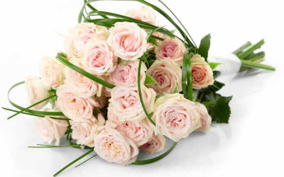 букет, cvety, розы, красивые, роз, цветы, цветов, розовые, белые, белых, букеты,