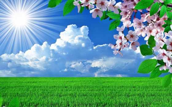 landscape, весна, trees, skies, sun, природа, небо, landscapes