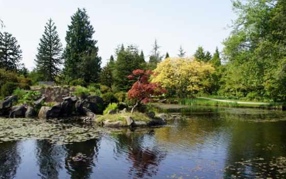 канада, природа, картинка