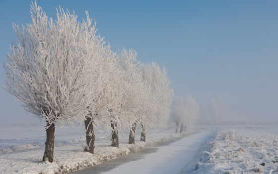 иней, winter, природа, trees, снег, дорога, природой, категории, ветви, дерево,