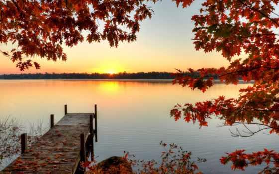 осень, лес, торрент, природа, осенние, природы, страница,