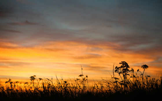 вечер, закат, природа