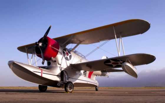 самолеты, плащ, black, авиация, необычных, сим, утка, darkwing, самолёт, оптом,