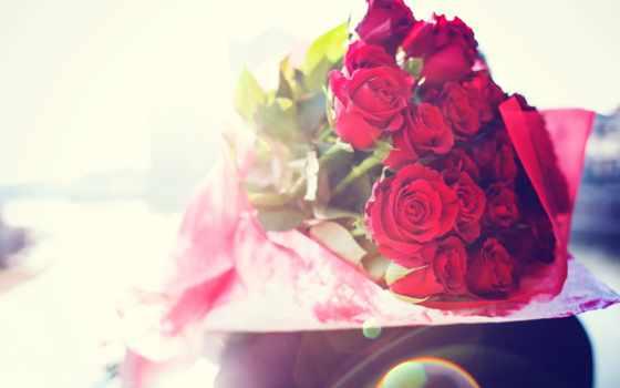 cvety, flowers, букет, free, роз, роза, фоны, алых,