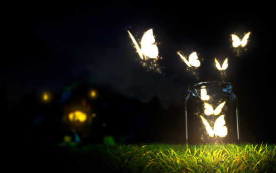 бабочка, бутылка, free, butterflies, розовый, art, взгляд,