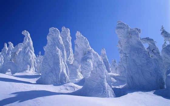 природа, снегу