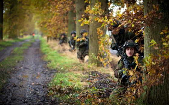 военные, лес, деревя