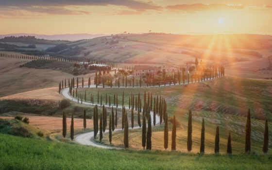 hill, tuscany, булка, italy, фото, поле, bukit, элемент, envato, house, bergulir
