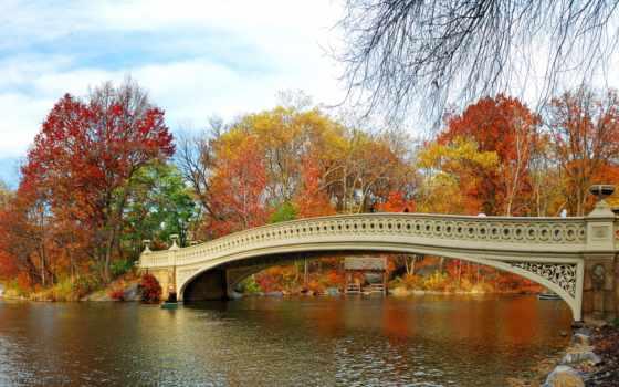 осень, природа, park