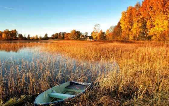 осень, озеро, природа