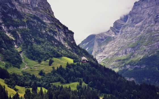 швейцария, природа, swiss, гора, горы, лес, mountains, high,