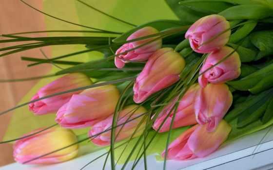 цветы, тюльпаны, букет, розовый, red, розовых, вконтакте,
