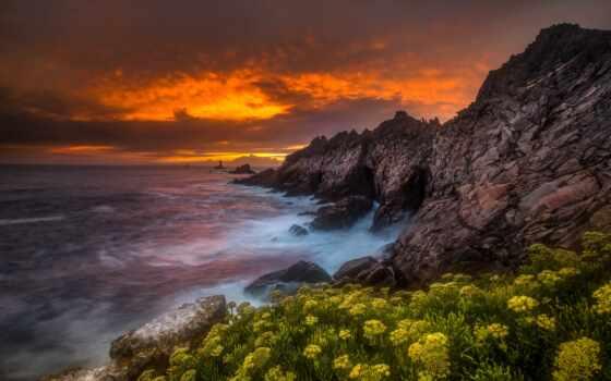 landscape, coastline, закат, natural, качество, telefon, природа, цветы