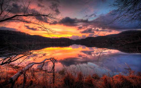 branch, ultra, озеро, жутко, упадок, сумерки, oblaka,