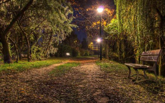 noche, pantalla, fondo, fondos, paisaje, naturaleza, parque, paisajes, gratis,