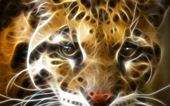 fire, tiger