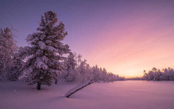 небо, mountains, winter, восход, лес, desktop,