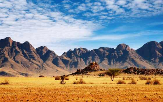 саванна, горы, кустарники