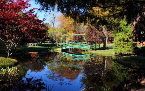 мосты, природа, деревья