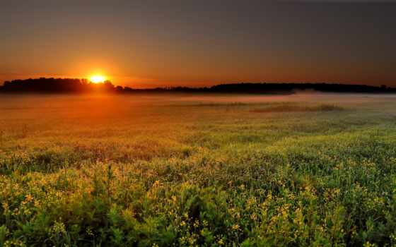 rising, sun, природа, рассвет, landscape, туман, поле, небо,