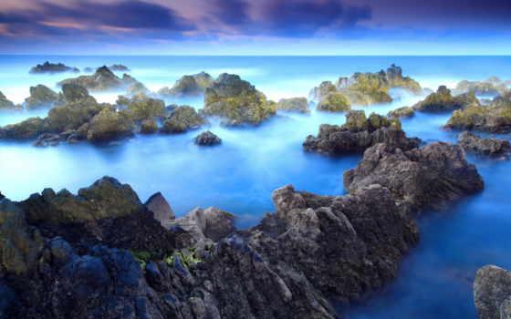 красивых, ocean, collector