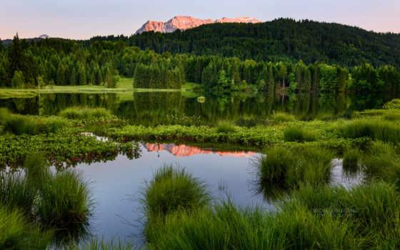 лес, summer, browse, trees, горы, landscape, ноутбук, страница, трава, дорога, река,