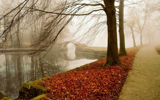 река, landscape, trees, осень, pitch, дерево