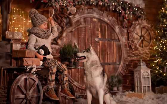 девушка, елка, new, собака, год, дерево, картинка, праздник