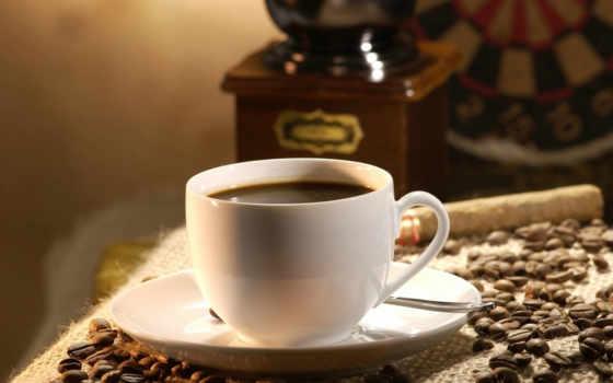 coffee, café, قهوة, macro, cup, full, presentation, сша, bean, психических, болезней, už, mix,