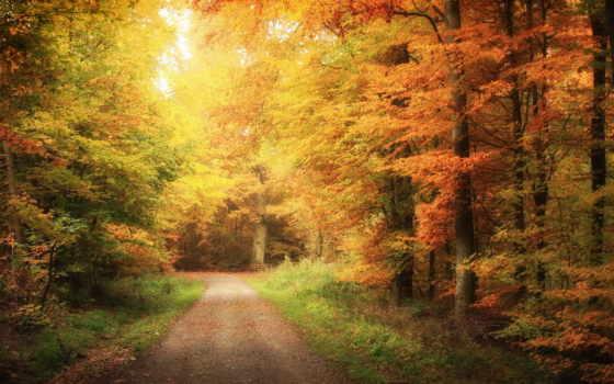пейзажи -, природа, красивые