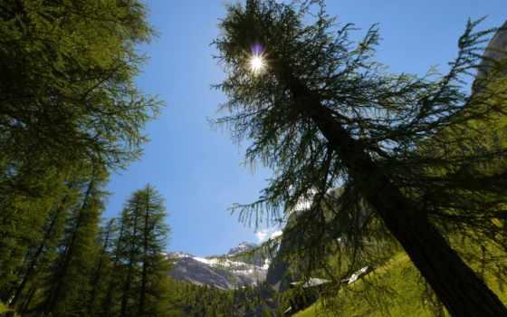 природа, mountains, pictures
