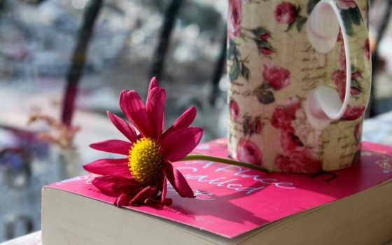 cup, книга, кружка, цветы, лепестки, розовые,