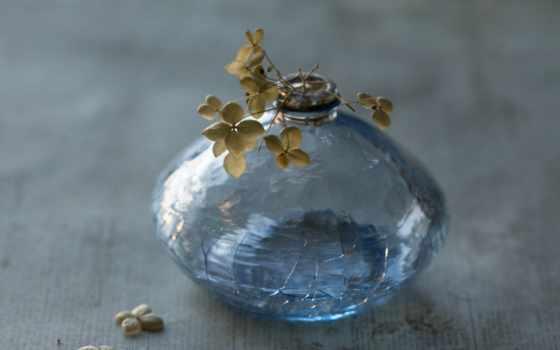 sentimental, ваза, nikon, desktop,