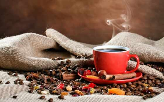 coffee, cup, steam, seed, cinnamon, pischat, hour, product, nutrition, pin