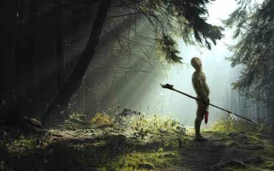 fantasy, лес, деревя