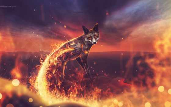 огонь, фокс, креатив, firefox, desktop, графика,